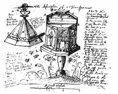 john evelyn's observation hive