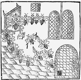 1641 Frontispiece woodcut from John Day's Parliament of Bees