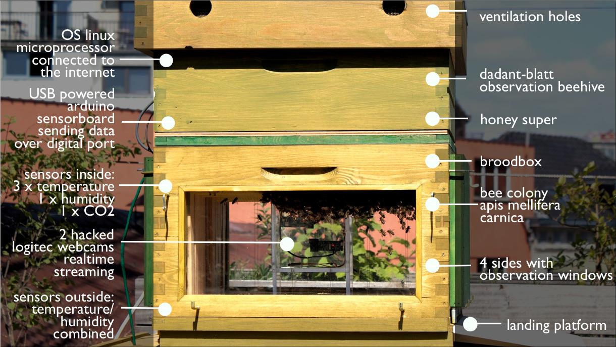 enhanced beehive