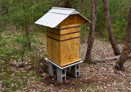perone beehive