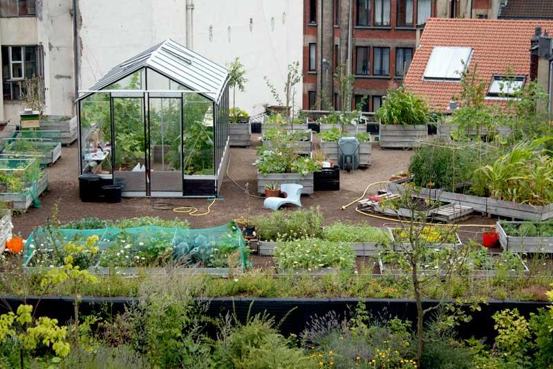 rooftop garden closer look
