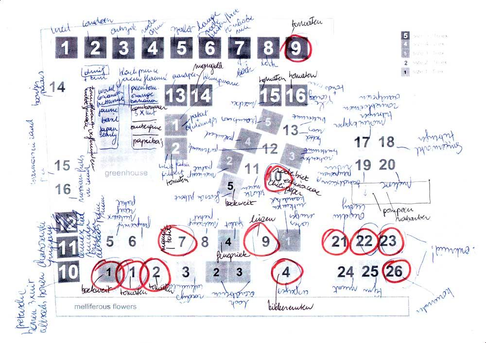 UAF garden plan 13 june 2013