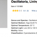 oscillatoria.png