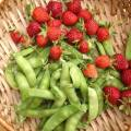 sugarsnaps and strawberries! finally summer.
