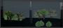greenlightdistrict:blendertuin03.png