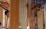 bee:cameras02.png