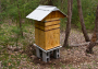 bee:perone-hive.png